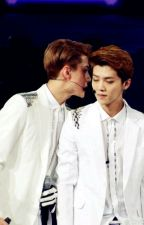 Someone I'm Not  (hunhan Fanfic) by hotshakebaby