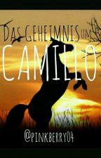 Das Geheimnis um Camillo by pinkberry04