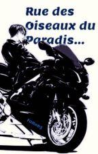 Rue des Oiseaux du Paradis... [Levi x Reader] by FaBob5