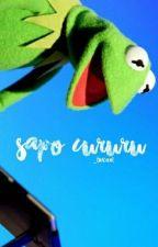 sapo cururu {rants} by kityoongi