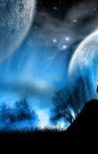 Found on a Full Moon by teenwolfderek
