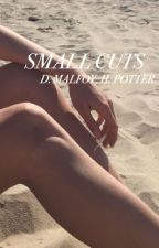 SMALL CUTS ♕ D.MALFOY, H.POTTER by EFFLORESCENT-