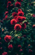 beautiful | daniel howell by -isxdora-