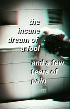 the insane dream of a fool and a few tears of pain ೂ yoonmin ; os by yoonminwho