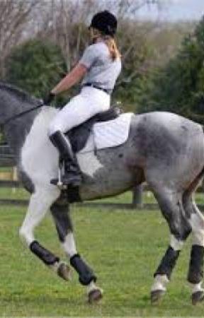 One Broken Girl  by horsezgirl123