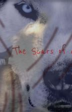 The Scars of a Wolf by Artist1923