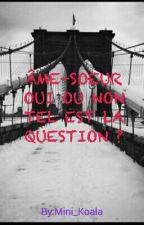 ÂME-SOEUR OUI OU NON TEL EST LA QUESTION ? by Mini_Koala