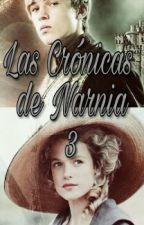 Las Crónicas de Narnia III (Peter Pevensie) by MaarStyles_