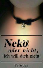 Neko oder nicht, ich will dich nicht! by Feliedae