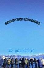Seventeen imagines by TitaniaCitra