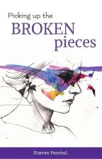 Picking up the broken pieces by SimPanx