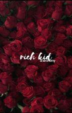 rich kid ♡ wroetozerk + minijzl ✓ by a-stronomy