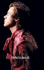 Perfecta para él. [Harry Styles] by MeMyselfandTime31
