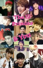 The 12 Princes & You <DISCONTINUED> by WYF_EXOforever