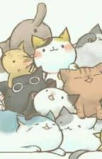 Warrior Cats RP by warriors_fanatic