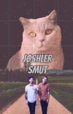 Joshler Smut by generic_gracie