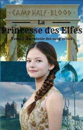 La princesse des Elfes /Tome 2 : La colonie des Sang-Mêlés\ by AelitaShaeffer