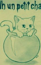 Oh un petit chat ! ( snarry ) by Esileiram