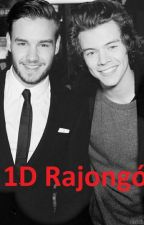 1D rajongó (Liam Payne, Harry Styles fanfiction) by Tomlinson-87