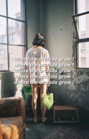 where the orchids grow by alxstandall