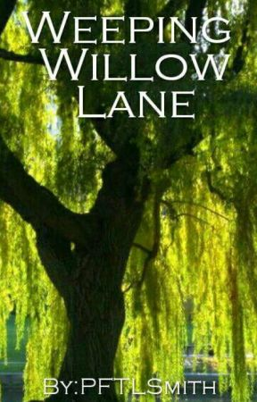 Weeping willow lane by PFTLSmith