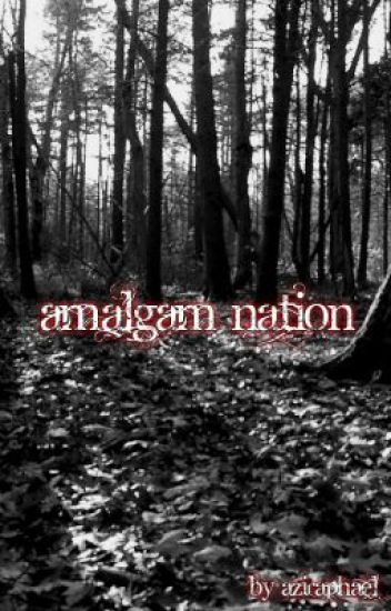 Amalgam Nation [This could possibly shock you, you've been warned.]