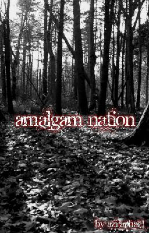 Amalgam Nation [This could possibly shock you, you've been warned.] by Aziraphael