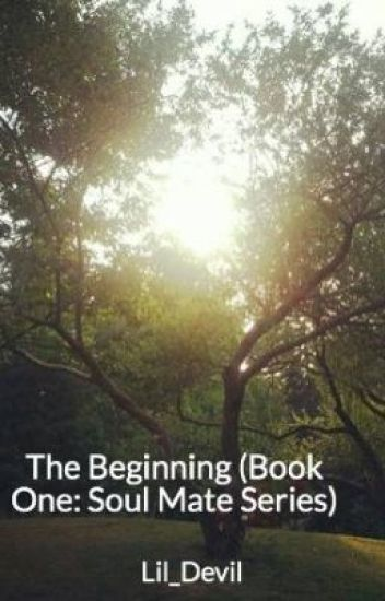 The Beginning (Book One: Soul Mate Series)