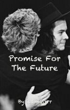 Promise For The Future || Narry by Seamairrr