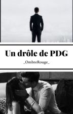 Un drôle de PDG  by _OmbreRouge_