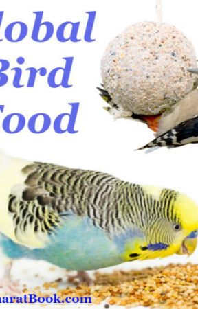 Global Bird Food Market by aadolfsmt