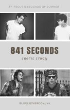 841 Seconds by BlueLionBrooklyn