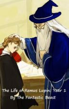 The Accounts of Remus Lupin's Childhood by thefantasticbeast