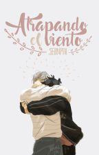 Atrapando el Viento [Viktuuri] by Sernpai