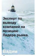 """Модель """"Маркетинга Слепой Зоны"""" по выводу компаний на позицию Лидера рынка. by VadimStanislavovich"""