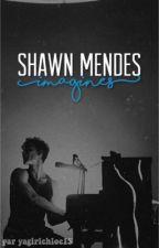 Shawn Mendes imagines (en pause) by mendesimagination
