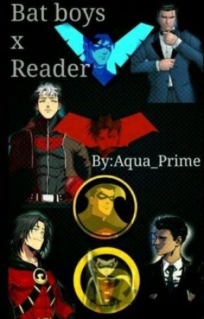Batboys x reader~~hiatus~~ - Tim x Nightwing's sister reader