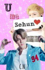 U me SeHun *[SeXing] by CarelessNine