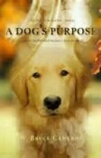 A Dog's Purpose Roleplay by AddictToAHairyTeen