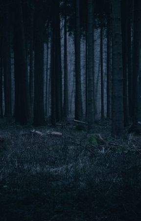 A Walk In The Woods by but_is_it_plausible