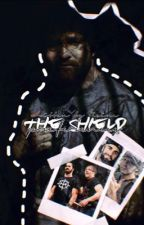 Preferences☆The Shield by moaningroman