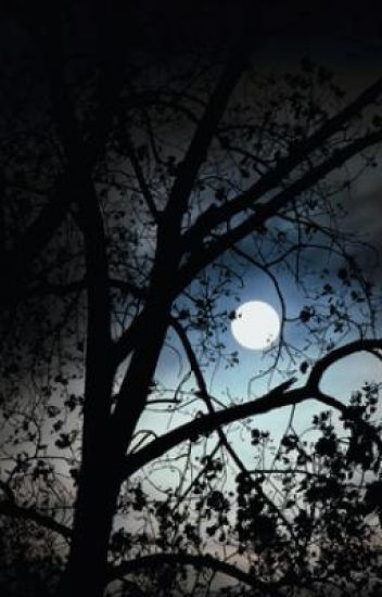 Nightlight    (Book 2 from Shadows series)