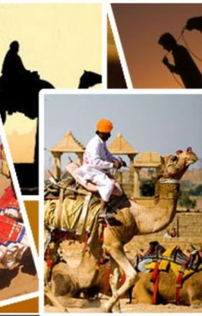 5 Mesmerizing Tour Packages in Rajasthan By Udaipur Travel Agency by udaipurtaravel