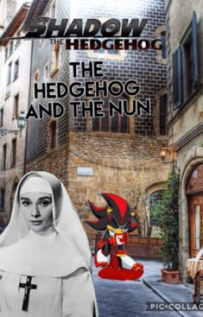 Shadow The Hedgehog Episode 2 The Hedgehog And The Nun by sheamcdonough64