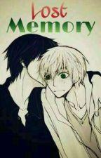 Lost Memory (SH y JR) by yaoiislife_98