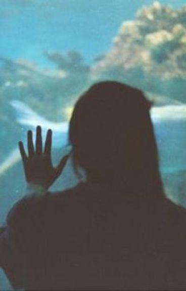 así el tiburón se enamora del pecesito (justin bieber)