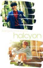 halcyon | Jung Hoseok × Jeon Jeongguk by KakaSzczur