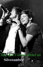 They don't know about us (Larry Stylinson One Shot) Español by Silveramber