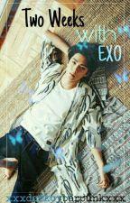 Two weeks with Exo| Sehun x Reader by XxxDarkCyberPunkxxX