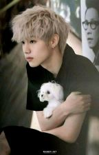 Mark's Diary    Markson [German] (Finished) by xScarlet002